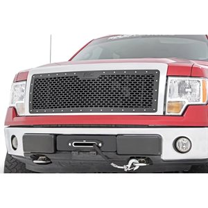 FORD MESH GRILLE (09-14 F-150)